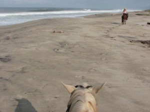 La Punta beach by horseback