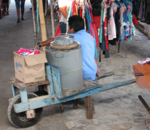 fresh organic homemade ice cream mexico vendor oaxaca