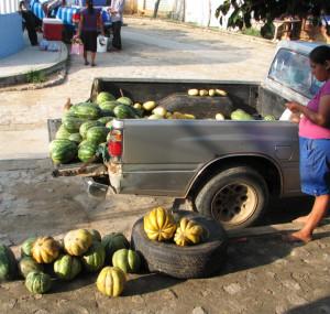 watermelon pumpkin organic huatulco santa domingo market oaxaca