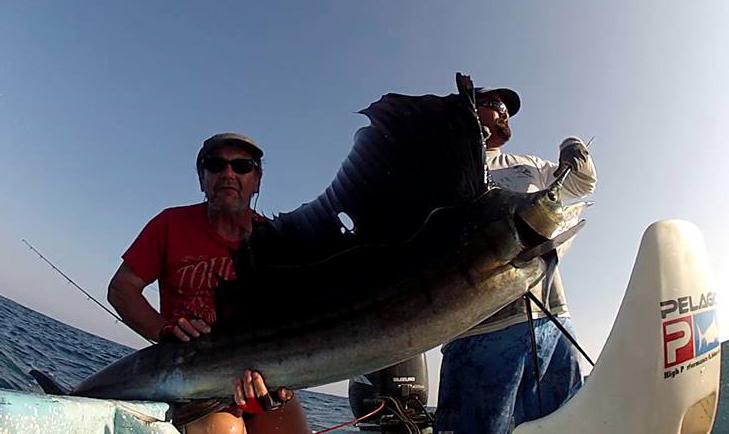pez vela puerto escondido mexico
